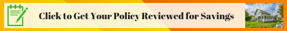 click for policy review banner ad